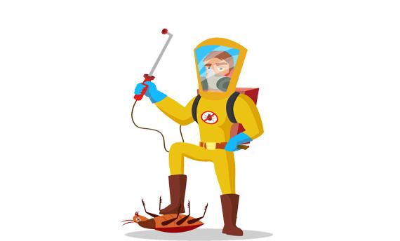 شركة مكافحة حشرات بالقنفذة 0540505502 شركة رش مبيدات بالقنفذة